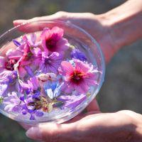 Florathérapie